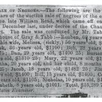 Newspaper Advertisement for Slave Auction, Gallatin Examiner